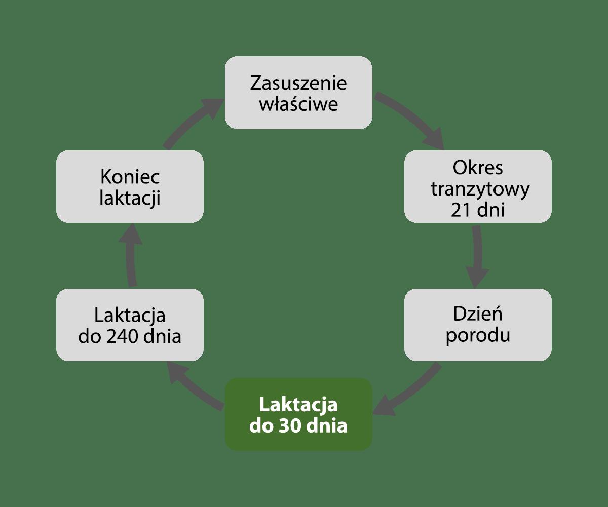 laktacja do 30 dnia - EMIWO
